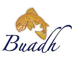Buadh Ltd – Talent and HR Consultant